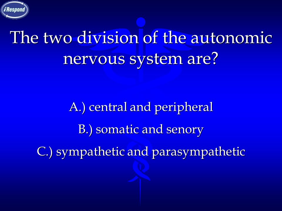 The two division of the autonomic nervous system are