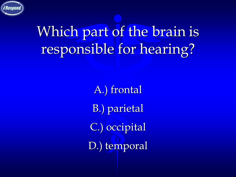 Which part of the brain is responsible for hearing