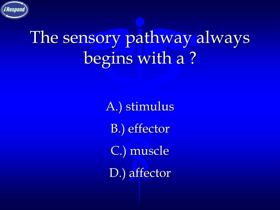 The sensory pathway always begins with a