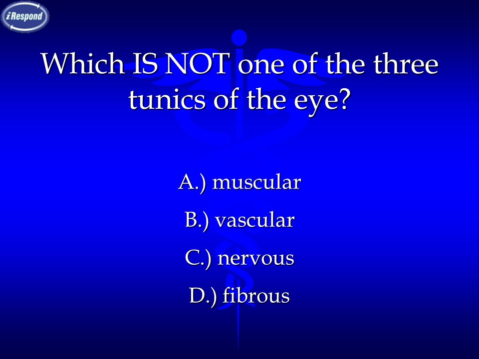 Which IS NOT one of the three tunics of the eye