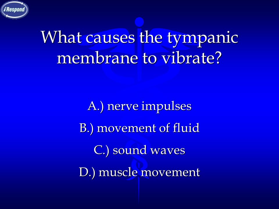 What causes the tympanic membrane to vibrate