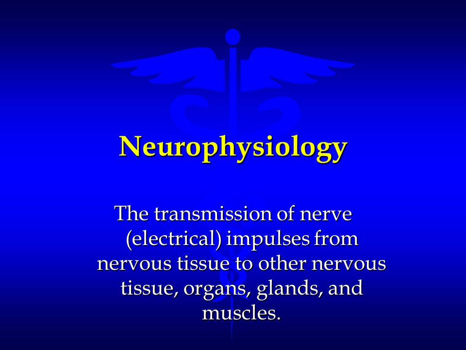 Neurophysiology The transmission of nerve (electrical) impulses from nervous tissue to other nervous tissue, organs, glands, and muscles.