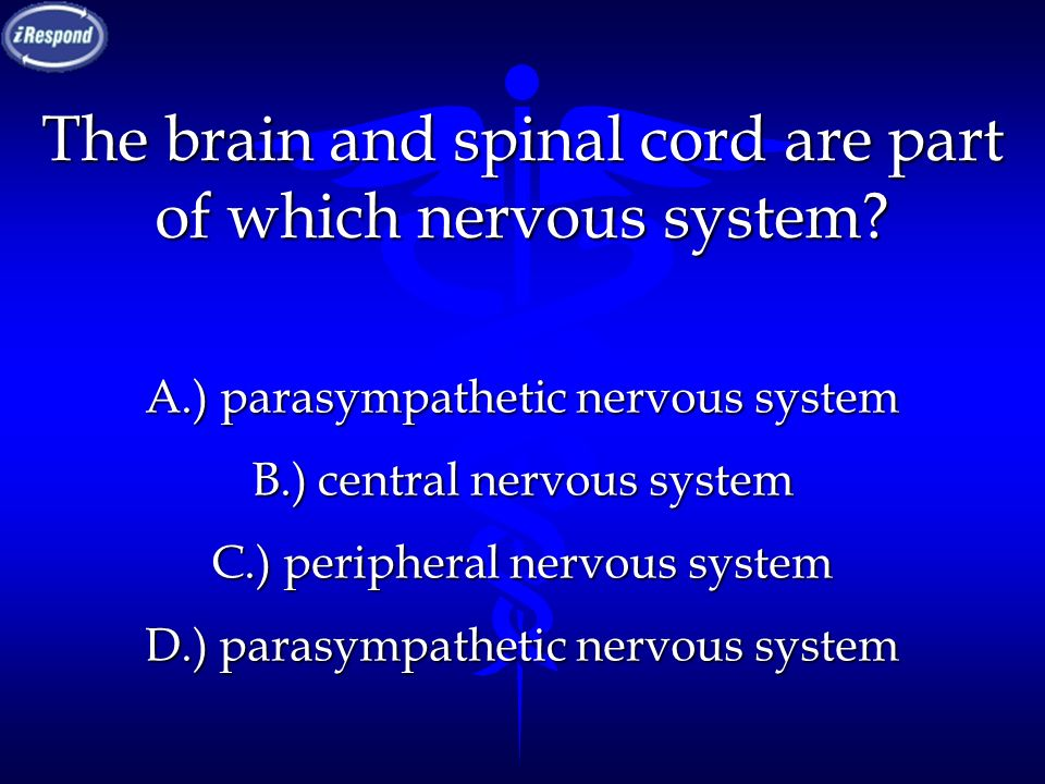 The brain and spinal cord are part of which nervous system