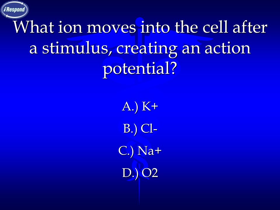 What ion moves into the cell after a stimulus, creating an action potential