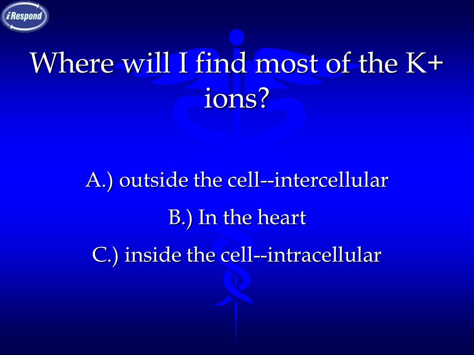 Where will I find most of the K+ ions