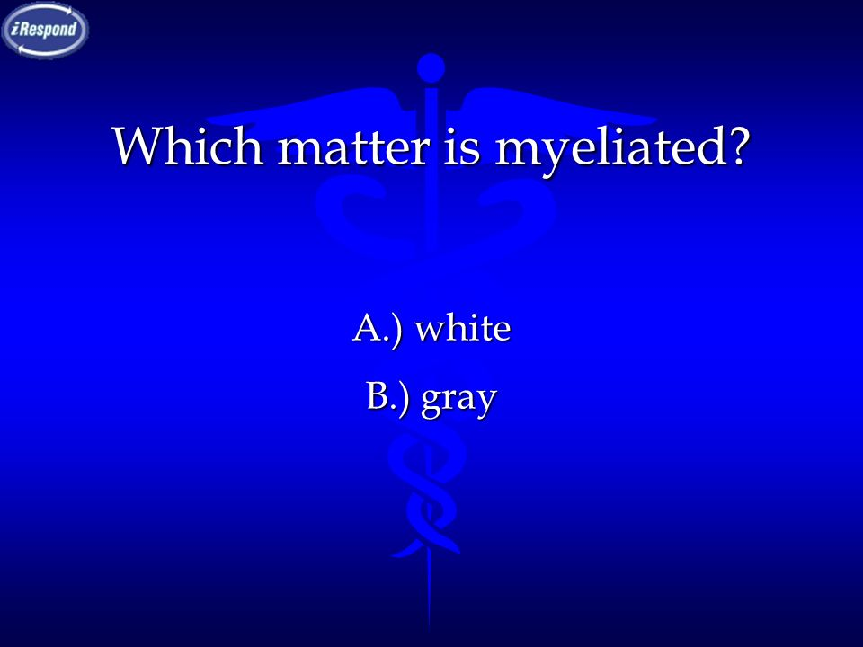 Which matter is myeliated