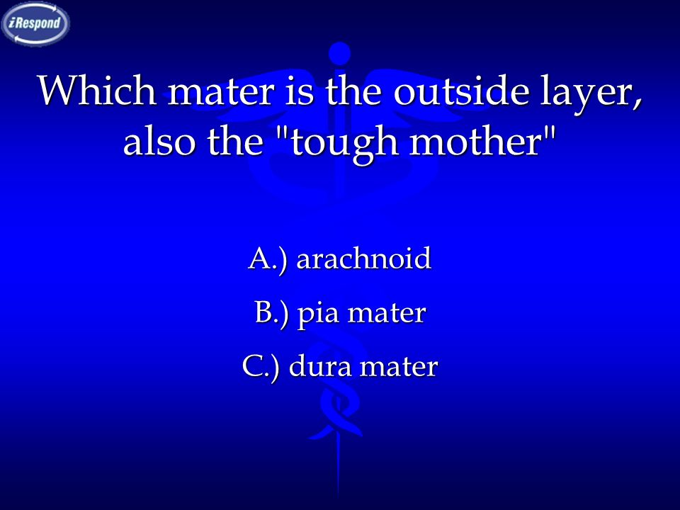 Which mater is the outside layer, also the tough mother