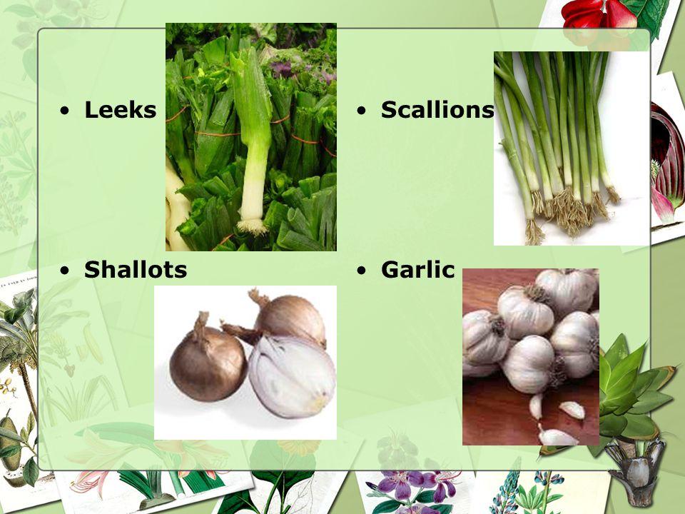 Leeks Scallions Shallots Garlic