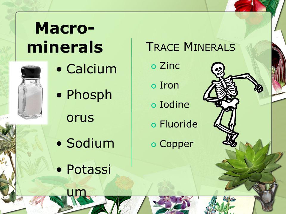 Macro-minerals Calcium Phosphorus Sodium Potassium Trace Minerals Zinc