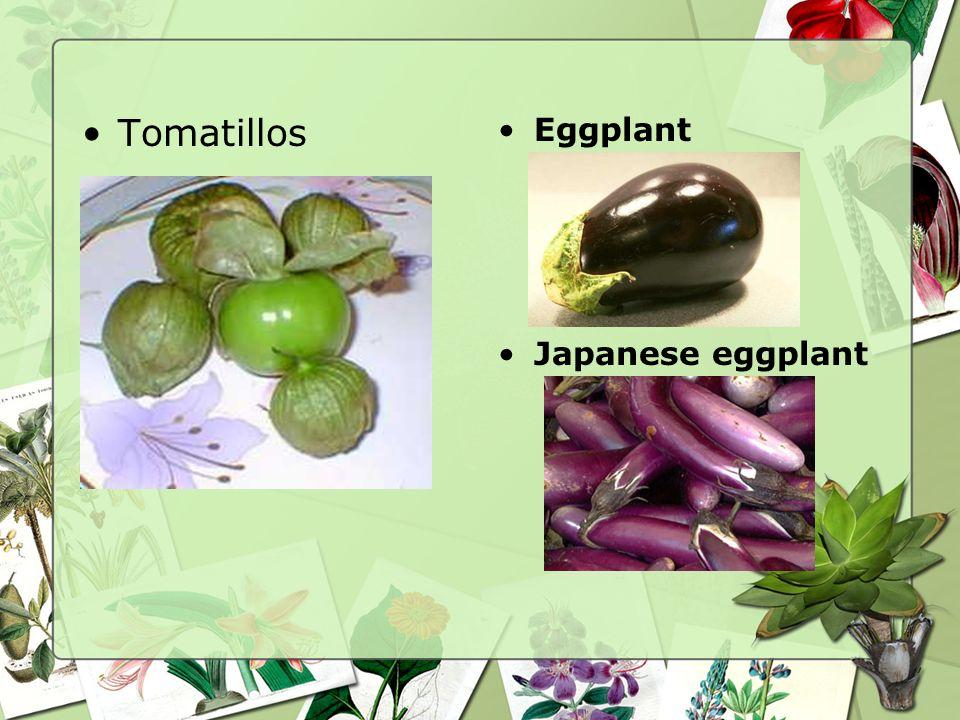 Tomatillos Eggplant Japanese eggplant