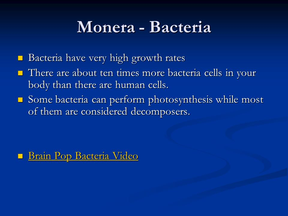 Monera - Bacteria Bacteria have very high growth rates
