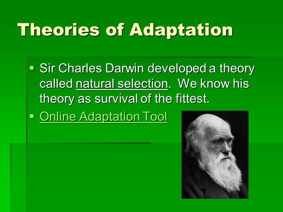 Theories of Adaptation