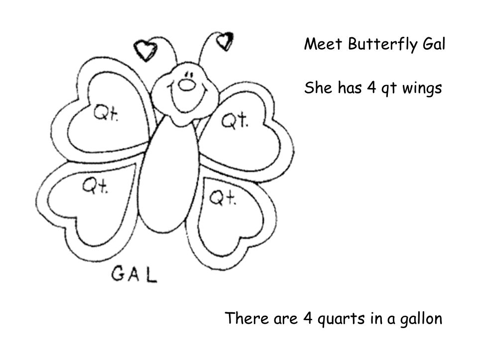 Meet Butterfly Gal She has 4 qt wings There are 4 quarts in a gallon