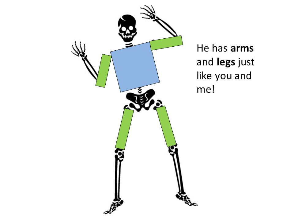 He has arms and legs just like you and me!