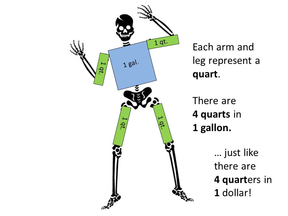 Each arm and leg represent a quart.