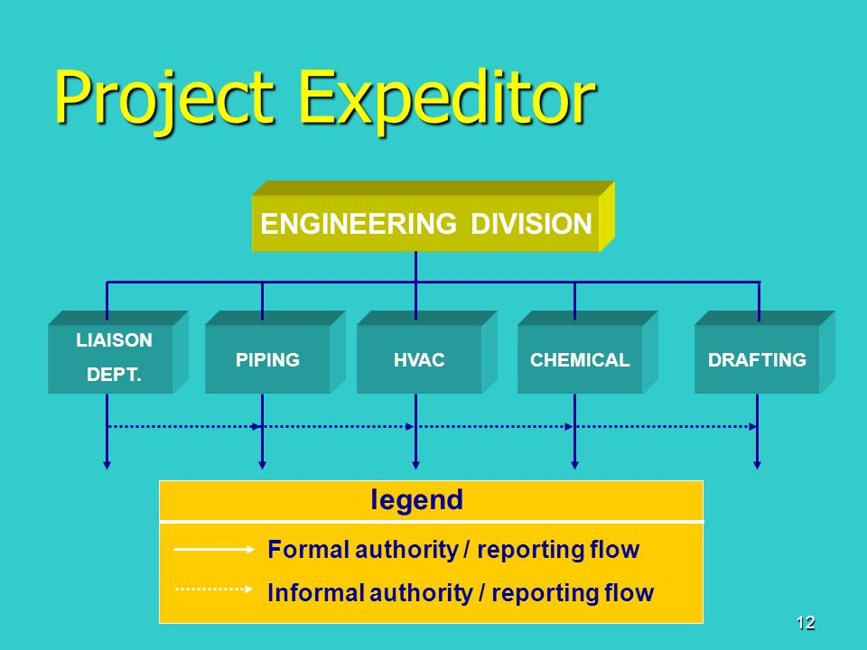 project expeditor You can also see project coordinators or project expediters working in a  projectized or strong matrix organization for larger projects however, in this case  they.