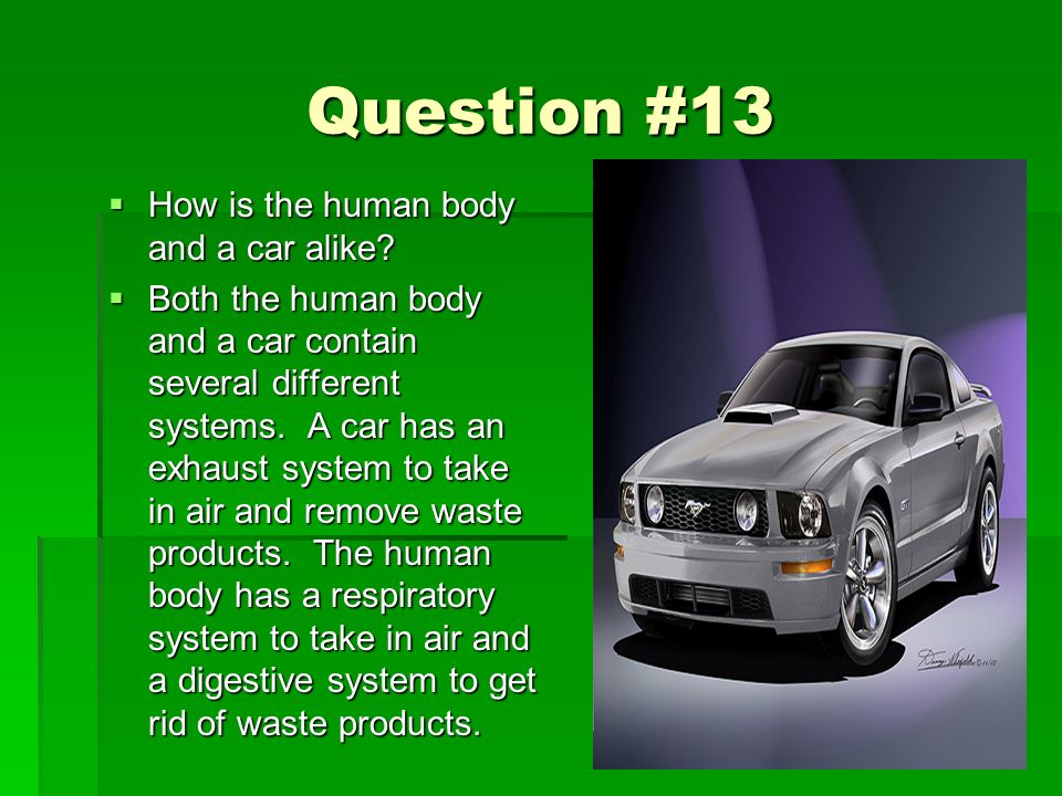 Question #13 How is the human body and a car alike