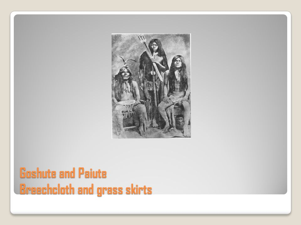 Goshute and Paiute Breechcloth and grass skirts