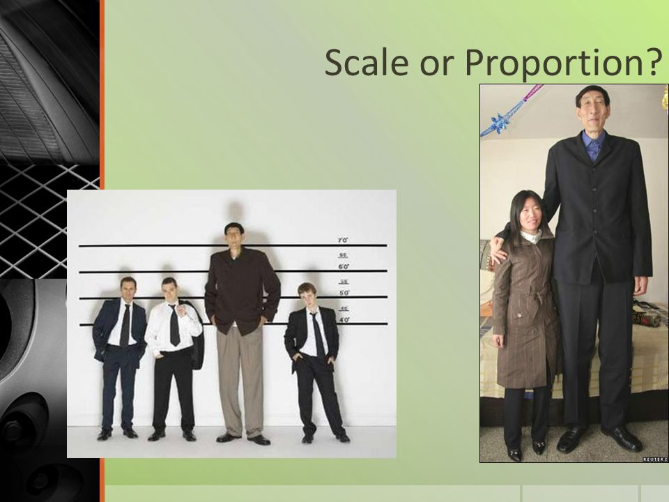 Scale or Proportion