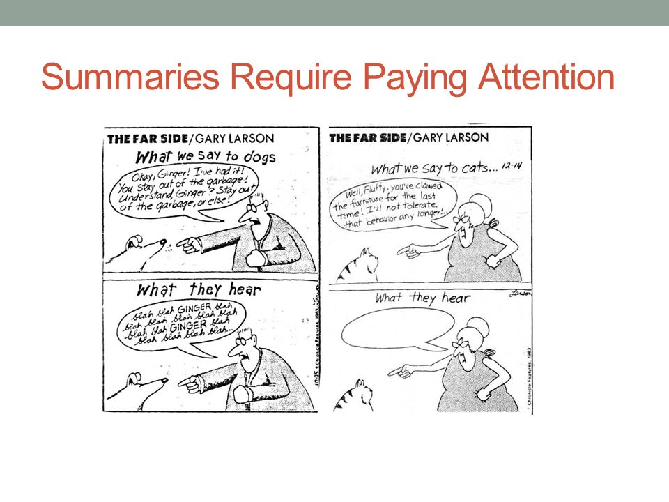 Summaries Require Paying Attention