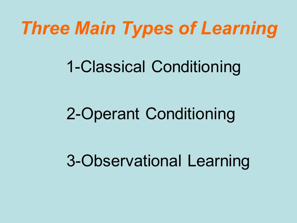 Three Main Types of Learning