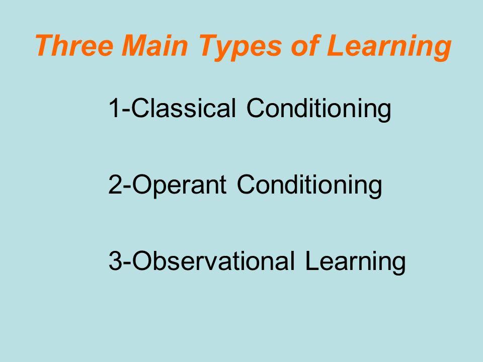 Three Main Types of Learning