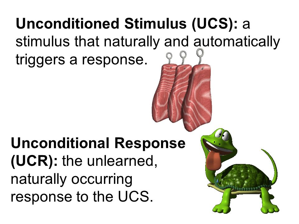 Unconditioned Stimulus (UCS): a stimulus that naturally and automatically triggers a response.