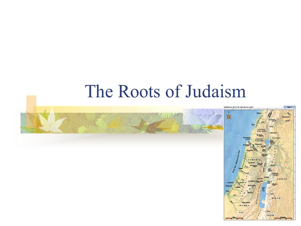 The Roots of Judaism