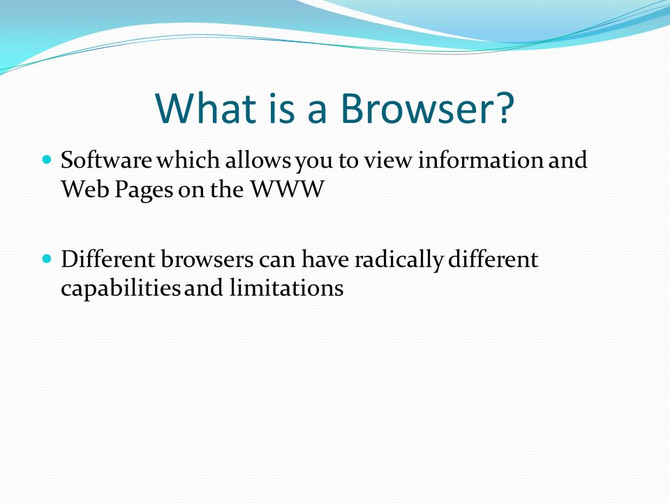 What is a Browser Software which allows you to view information and Web Pages on the WWW.