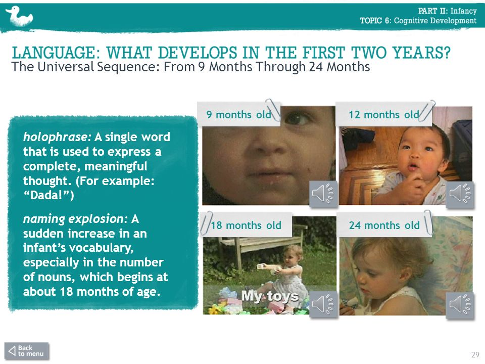 The Universal Sequence: From 9 Months Through 24 Months