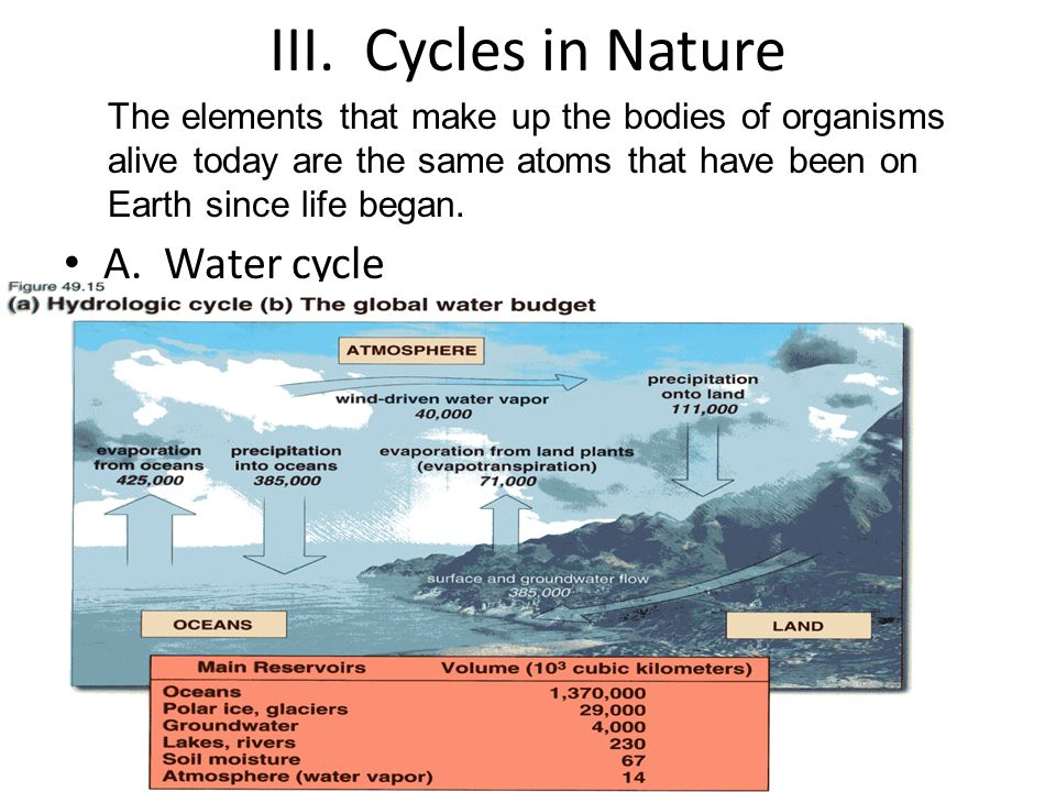 III. Cycles in Nature A. Water cycle
