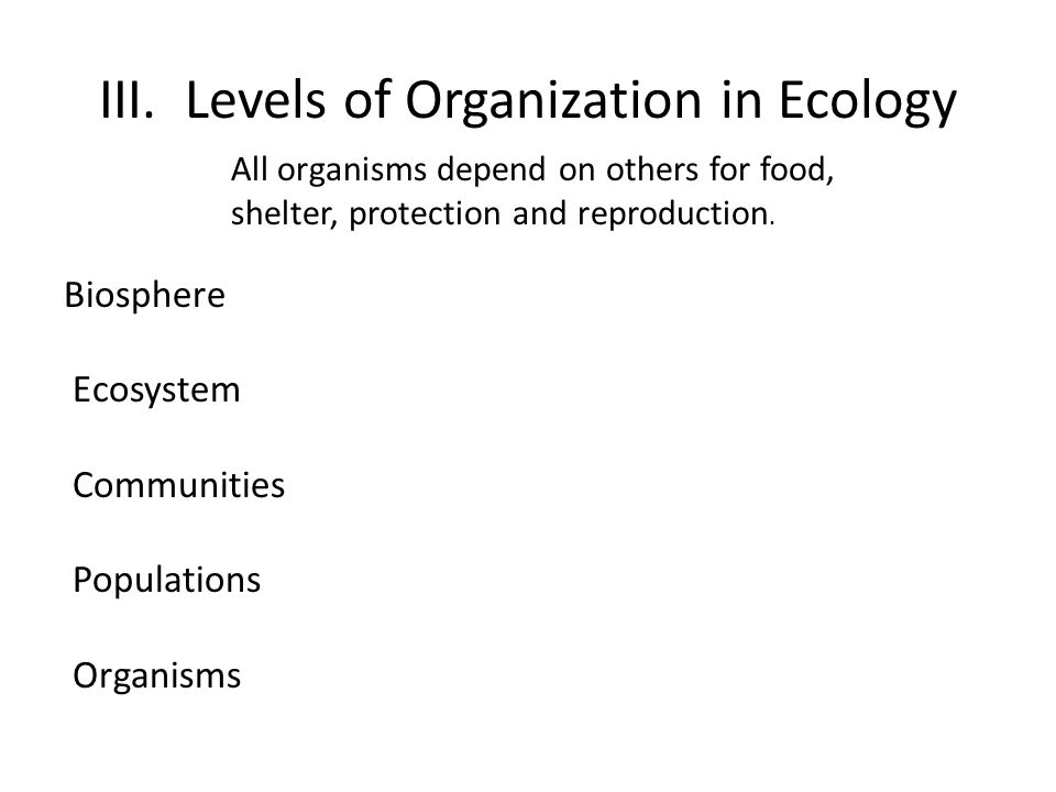III. Levels of Organization in Ecology