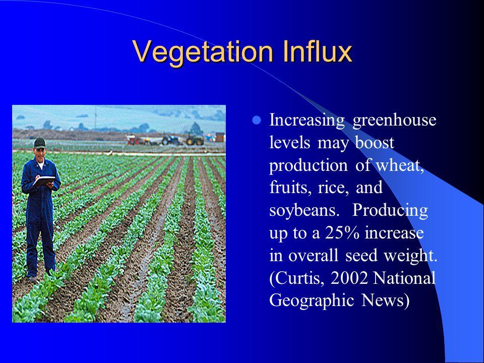 Vegetation Influx