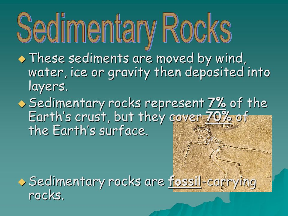 Sedimentary rocks are fossil-carrying rocks.