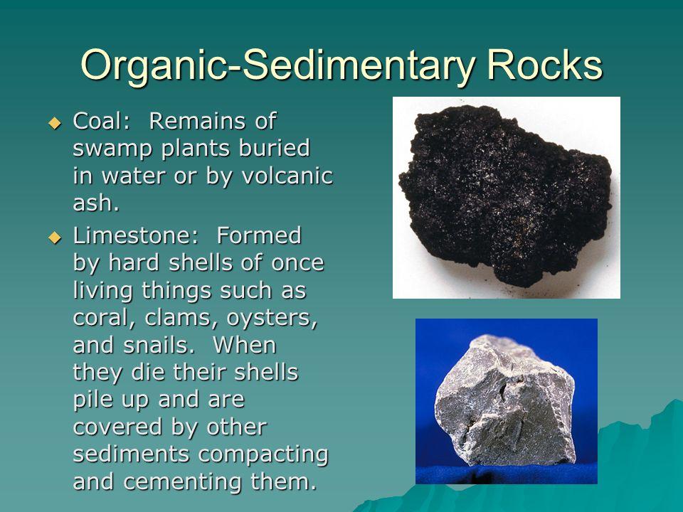 Organic-Sedimentary Rocks