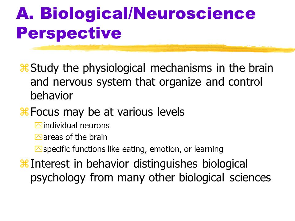 A. Biological/Neuroscience Perspective