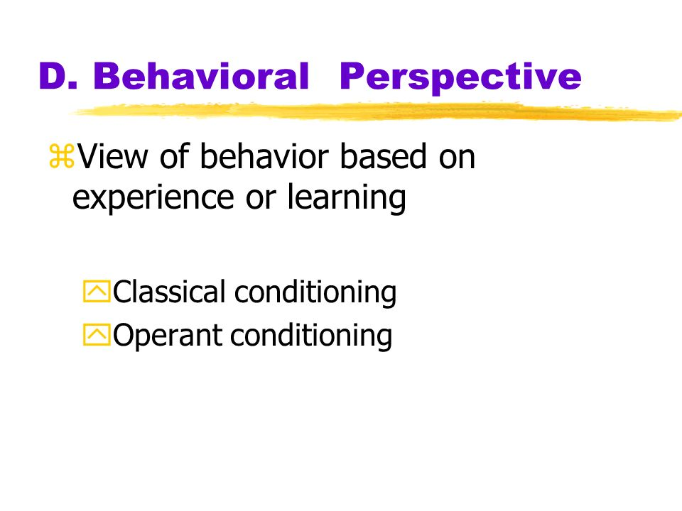 D. Behavioral Perspective