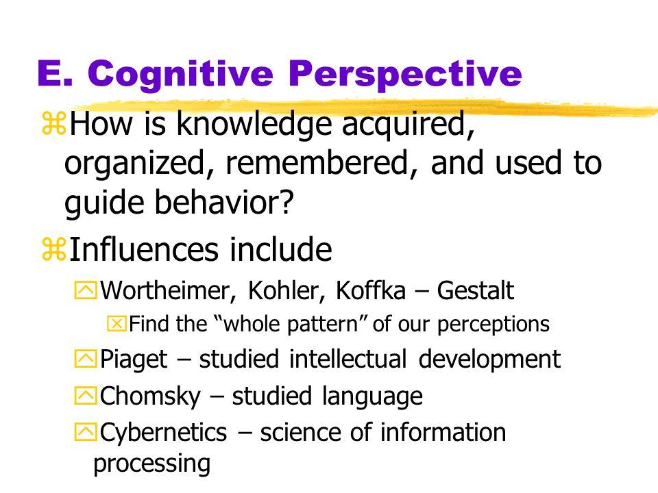 E. Cognitive Perspective