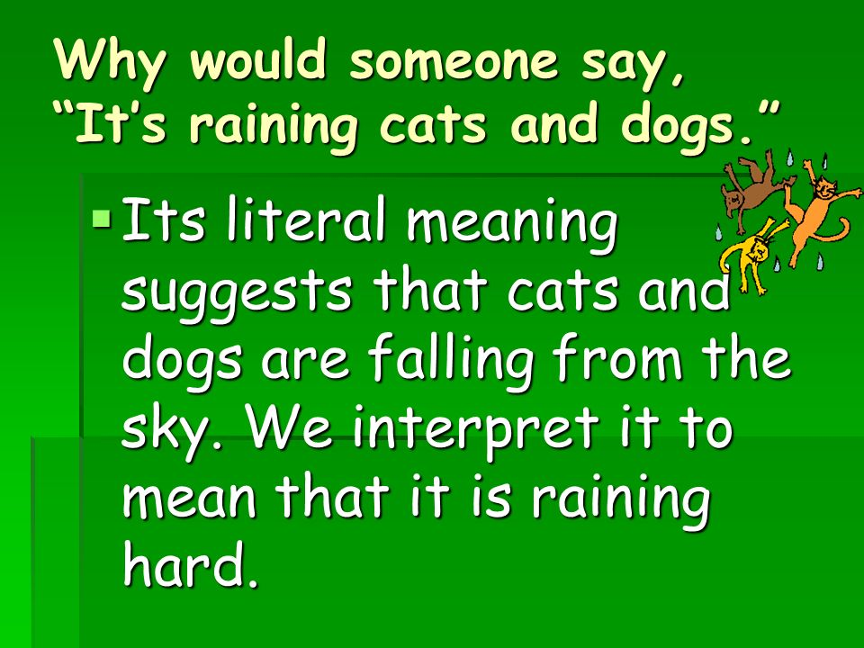 Why Do People Say Its Raining Cats And Dogs
