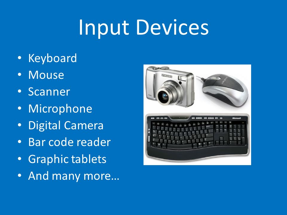 Input Devices Keyboard Mouse Scanner Microphone Digital Camera