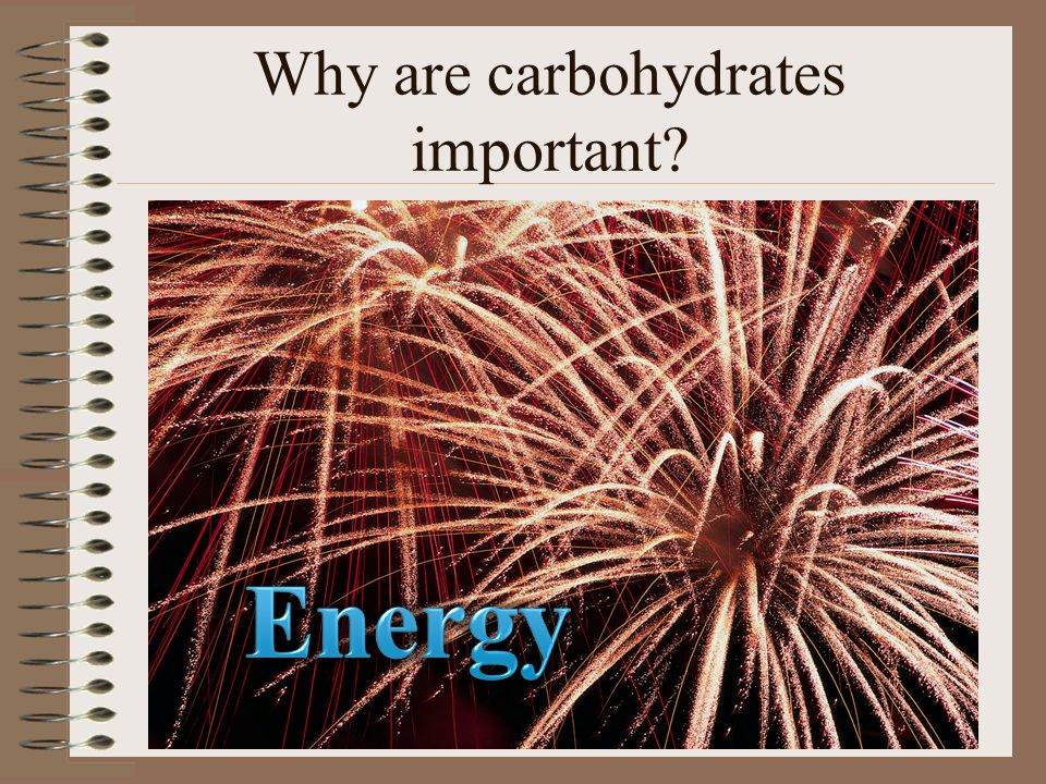 Why are carbohydrates important