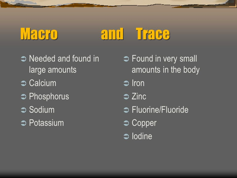 Macro and Trace Needed and found in large amounts Calcium Phosphorus