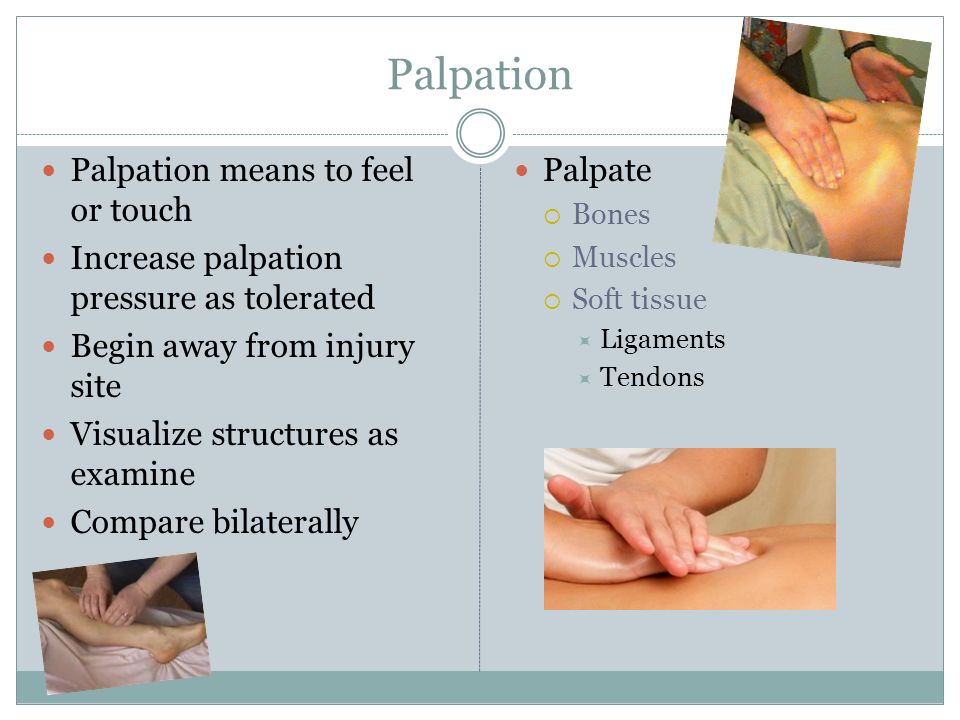 Palpation Palpation means to feel or touch