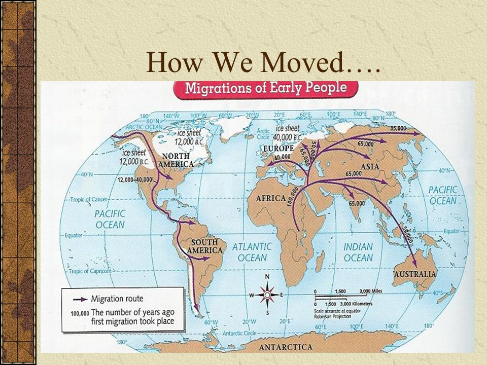 How We Moved….