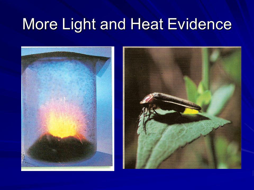 More Light and Heat Evidence