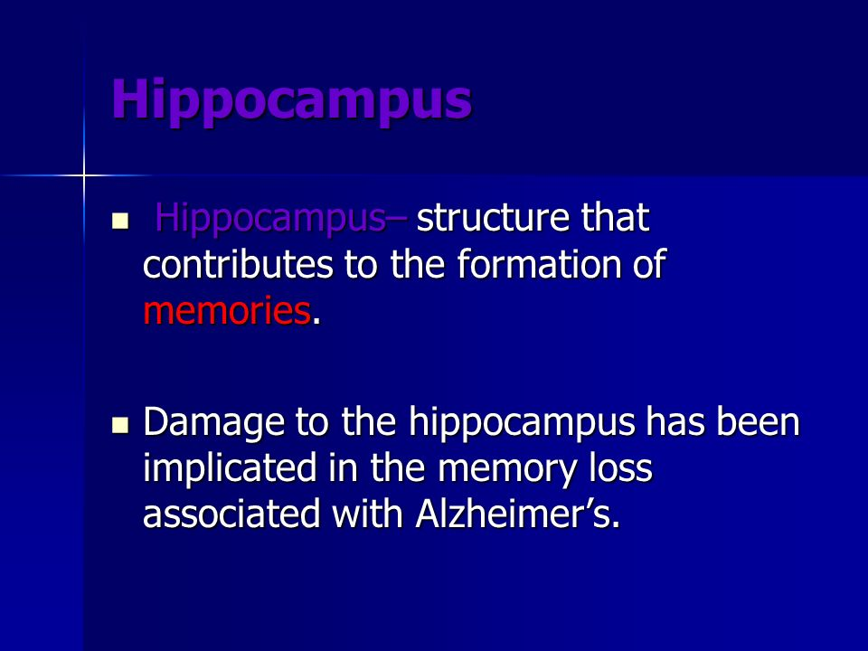 HippocampusHippocampus– structure that contributes to the formation of memories.