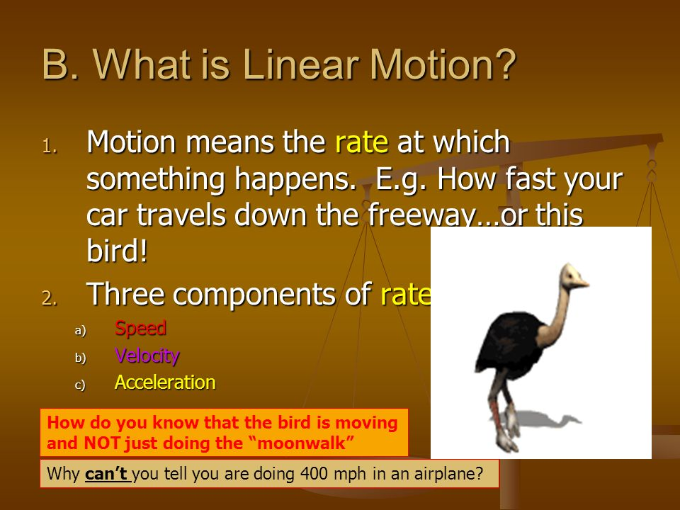 B. What is Linear Motion Motion means the rate at which something happens. E.g. How fast your car travels down the freeway…or this bird!