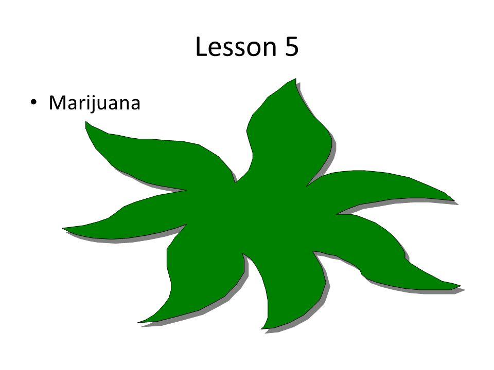 Lesson 5 Marijuana