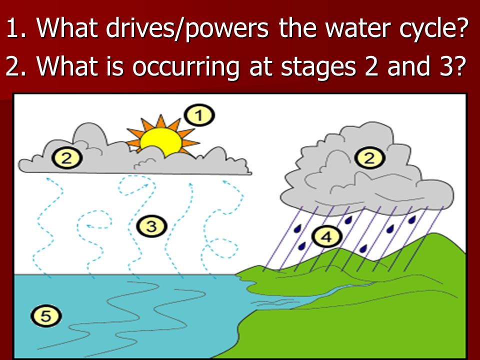 1. What drives/powers the water cycle