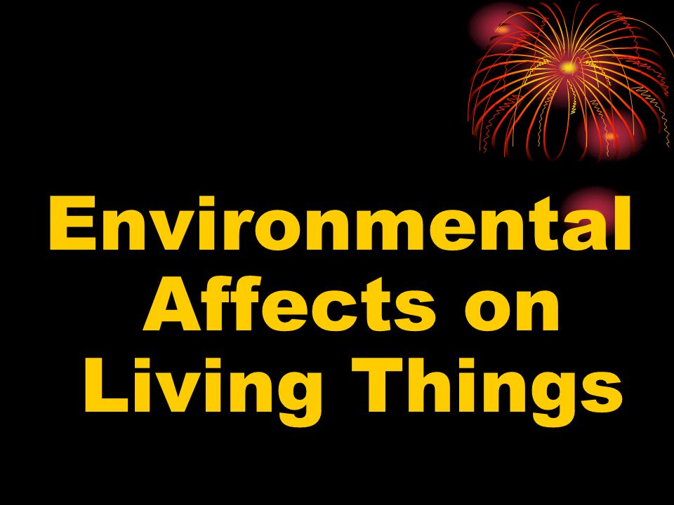Environmental Affects on Living Things